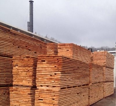Timber Policy